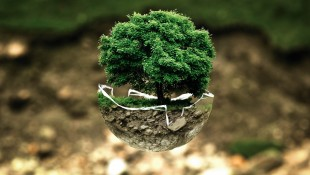 一幅保护大自然创意平面设计