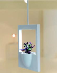室内植物创意花瓶怎么设计?