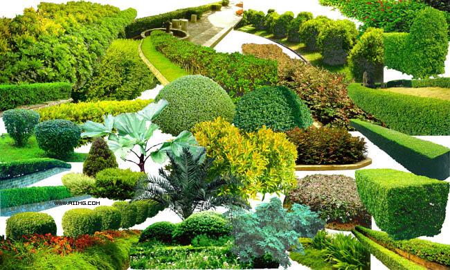 草地 绿化 园林 树 草坪 园林元素 花台 psd分层素材 设计素材图片