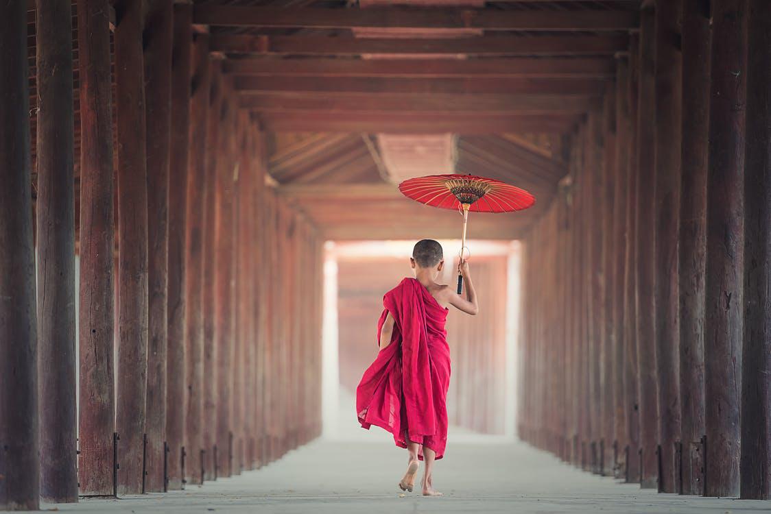 小沙弥 佛学 佛教 佛 信仰 宗教 红伞 唯美图片