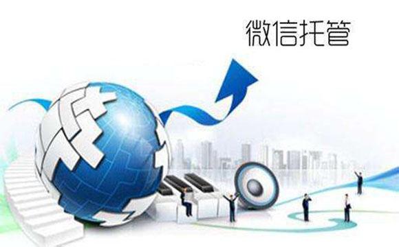 海螺邦-专业微信公众号代运营公司