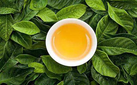 温馨茶叶广告文案,冬日更暖心